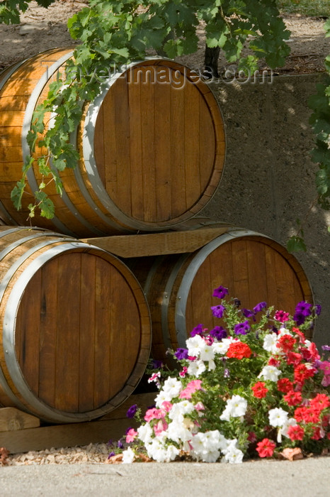 canada645: Okanagan Valley, BC, Canada: wine barrels - photo by D.Smith - (c) Travel-Images.com - Stock Photography agency - Image Bank