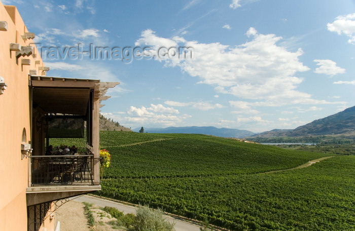 canada646: Okanagan Valley, BC, Canada: scenic view at the Burrowing Owl Vineyards - rolling hills - photo by D.Smith - (c) Travel-Images.com - Stock Photography agency - Image Bank