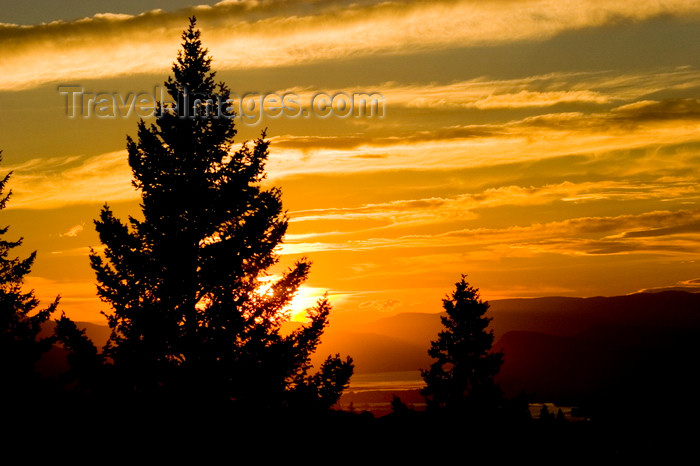 canada649: Vallerview, BC, Canada: Scenic trees at sunset near Kamloops - BC Interior - photo by D.Smith - (c) Travel-Images.com - Stock Photography agency - Image Bank
