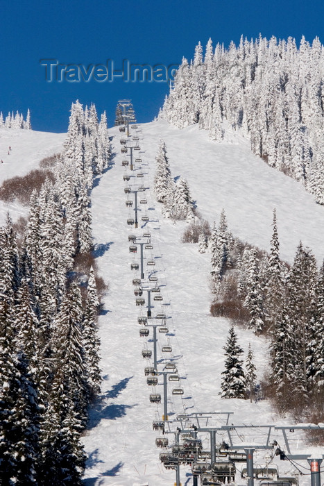 canada651: Kamloops, BC, Canada: Sun Peaks skiing resort - chairlifts, ski slopes, snow, trees, mountains and blue sky - Tod Mountain - photo by D.Smith - (c) Travel-Images.com - Stock Photography agency - Image Bank