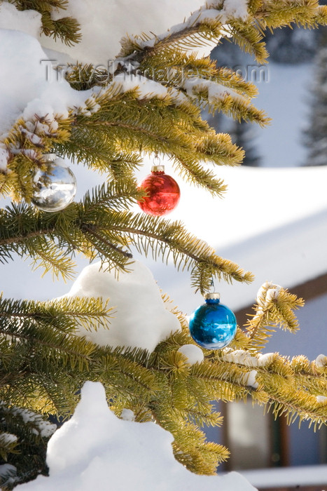 canada657: Kamloops, BC, Canada: Christmas Tree ornaments and snow - Sun Peaks ski resort - photo by D.Smith - (c) Travel-Images.com - Stock Photography agency - Image Bank