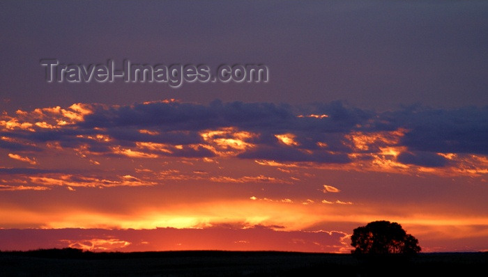 canada74: Canada / Kanada - Saskatchewan: fiery red and orange colors - beautiful sunrise in the autumn - photo by M.Duffy - (c) Travel-Images.com - Stock Photography agency - Image Bank