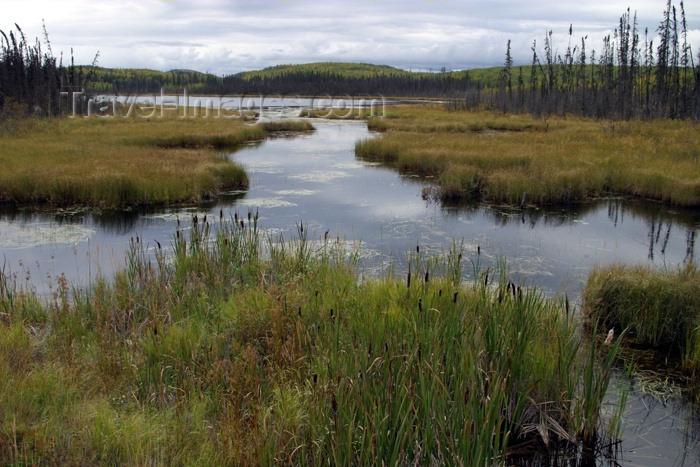 canada76: Canada / Kanada - Saskatchewan: peaceful lake - photo by M.Duffy - (c) Travel-Images.com - Stock Photography agency - Image Bank