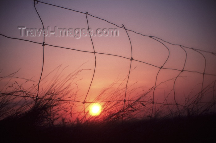 canada89: Canada / Kanada - Saskatchewan: colorful sunset seen through a fence - photo by M.Duffy - (c) Travel-Images.com - Stock Photography agency - Image Bank