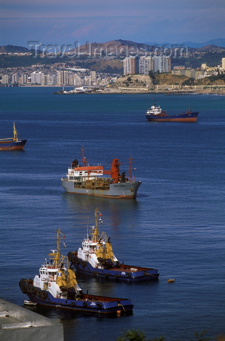 chile168: Valparaíso, Chile: large ocean going cargo ships and tug boats in the harbour - photo by C.Lovell - (c) Travel-Images.com - Stock Photography agency - Image Bank