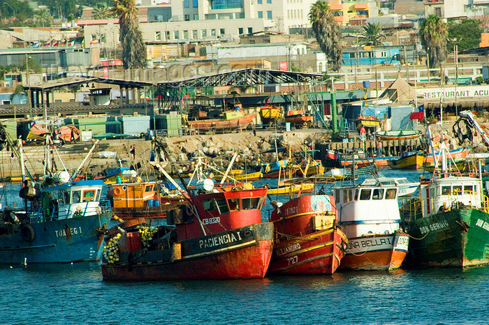 chile2: Chile - Arica: fishing boats in the harbour - barcos de pesca en el puerto - photo by D.Smith - (c) Travel-Images.com - Stock Photography agency - Image Bank