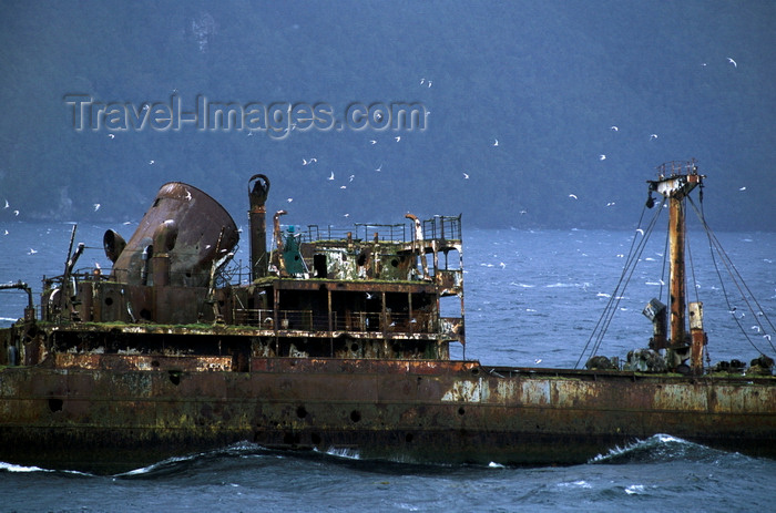 chile212: Corcovado Gulf, Los Lagos Region, Chile: wreck – half sunken ship and flying terns, en route from Puerto Montt to Puerto Natales - Patagonia - photo by C.Lovell - (c) Travel-Images.com - Stock Photography agency - Image Bank