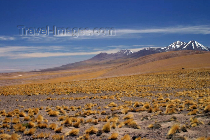chile68: Chile - Atacama Desert/ deserto de Atacama: view from Laguna altiplánica - snow on the peaks - photo by N.Cabana - (c) Travel-Images.com - Stock Photography agency - Image Bank