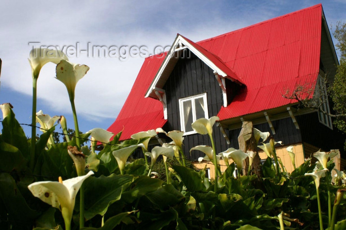 chile92: Valdivia, Los Rios, Chile: red roof cottage - photo by N.Cabana - (c) Travel-Images.com - Stock Photography agency - Image Bank