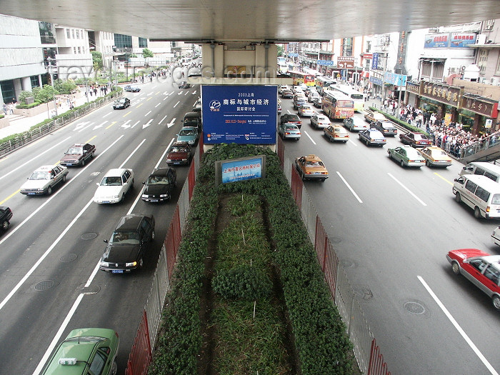 china2: China - Shanghai / SHA: traffic - cars - under an overvpass - photo by G.Friedman - (c) Travel-Images.com - Stock Photography agency - Image Bank