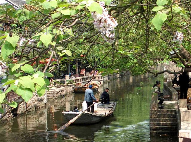 china42: China - Shanghai: Venice of the East - Zhouzhuang water village on the Yangtze delta - photo by F.Hoskin - (c) Travel-Images.com - Stock Photography agency - Image Bank