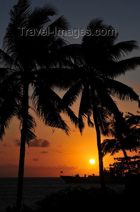 comoros14: Moroni, Grande Comore / Ngazidja, Comoros islands: coconut trees at sunset - view from the Corniche - photo by M.Torres - (c) Travel-Images.com - Stock Photography agency - Image Bank