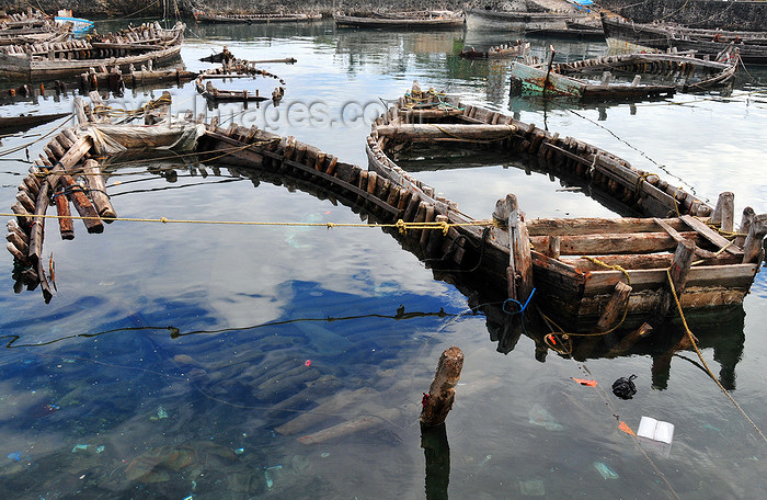 comoros58: Moroni, Grande Comore / Ngazidja, Comoros islands: wooden boats - the half sunk hulls of dhows illustrate a bygone era - Port aux Boutres - photo by M.Torres - (c) Travel-Images.com - Stock Photography agency - Image Bank