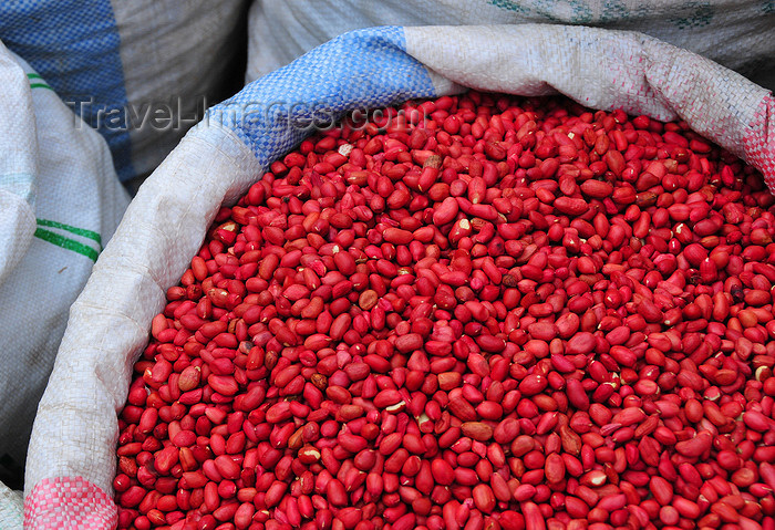 comoros72: Moroni, Grande Comore / Ngazidja, Comoros islands: peanuts at the market - cacahuètes - arachides - Arachis hypogaea - photo by M.Torres - (c) Travel-Images.com - Stock Photography agency - Image Bank