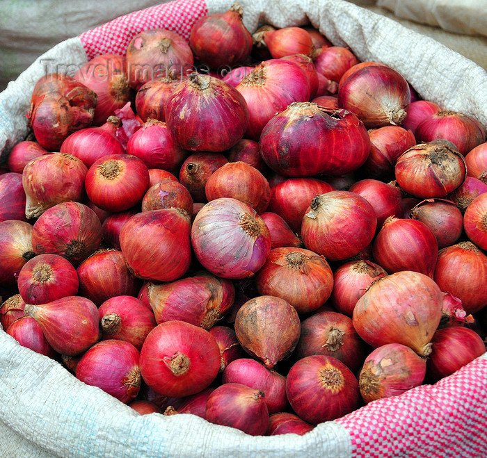 comoros73: Moroni, Grande Comore / Ngazidja, Comoros islands: onions at the market - photo by M.Torres - (c) Travel-Images.com - Stock Photography agency - Image Bank