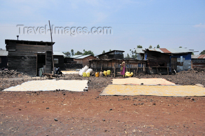 congo-dr16: Goma, Nord-Kivu, Democratic Republic of the Congo: cereals drying by the roadside - slum - wood and zinc huts - photo by M.Torres - (c) Travel-Images.com - Stock Photography agency - Image Bank