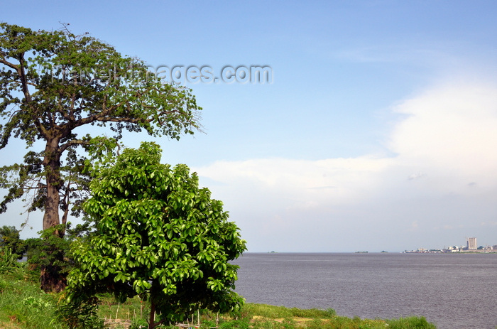 congo68: Brazzaville, Congo: banks of the Congo river, with a Baobab tree on the Brazzaville side and the Kinshasa skyline seen in the distance - view from Brazzaville's corniche - photo by M.Torres - (c) Travel-Images.com - Stock Photography agency - Image Bank