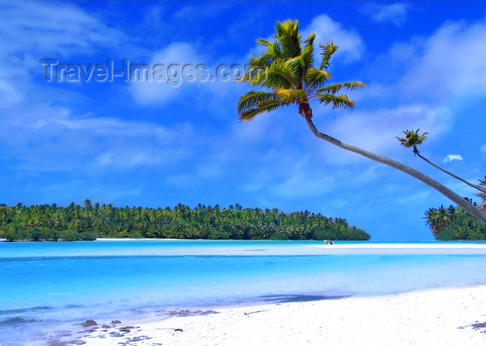 cook15: Cook Islands - Aitutaki: sandbar in lagoon - coconut tree -  classic picture postcard for a tropical island - photo by B.Goode - (c) Travel-Images.com - Stock Photography agency - Image Bank
