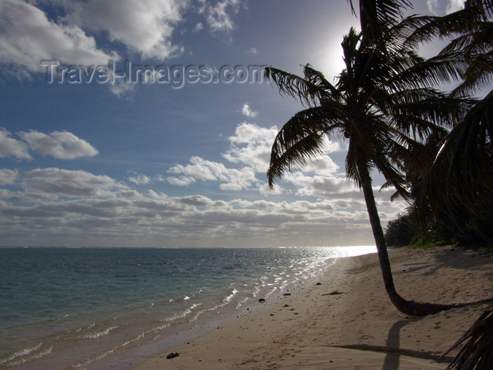 cook30: Cook Islands - Rarotonga island: sun behind palm tree - tropical beach - photo by B.Goode - (c) Travel-Images.com - Stock Photography agency - Image Bank