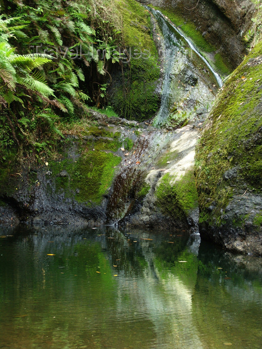 cook40: Cook Islands - Rarotonga island: Wigmore's waterfall, gushing  in the rainforest - photo by B.Goode - (c) Travel-Images.com - Stock Photography agency - Image Bank