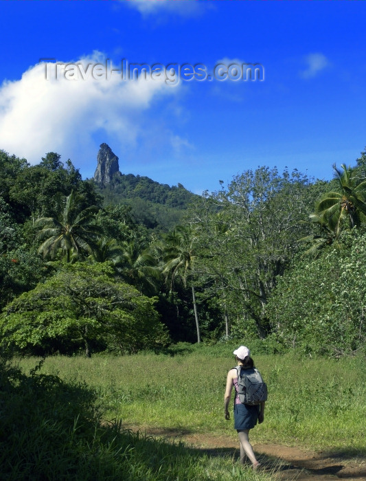 cook42: Cook Islands - Rarotonga island: trekking inland - photo by B.Goode - (c) Travel-Images.com - Stock Photography agency - Image Bank