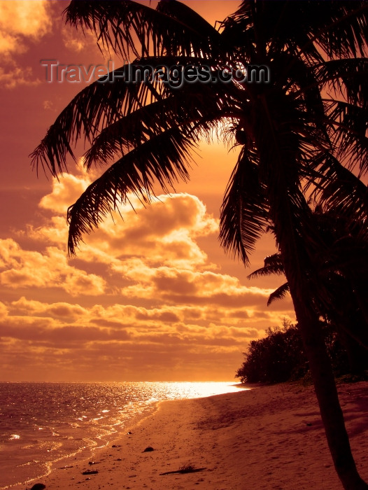 cook43: Cook Islands - Rarotonga island: Beautiful Pink Sunset - beach and palm silhouette - photo by B.Goode - (c) Travel-Images.com - Stock Photography agency - Image Bank