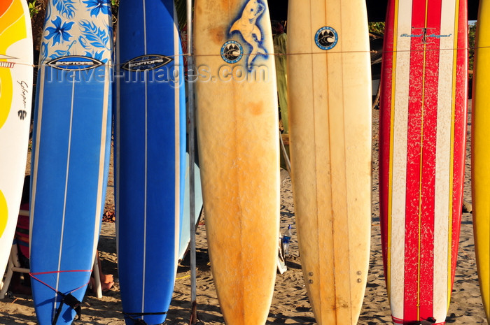 costa-rica112: Manuel António, Puntarenas province, Costa Rica: wall of surf boards - photo by M.Torres - (c) Travel-Images.com - Stock Photography agency - Image Bank