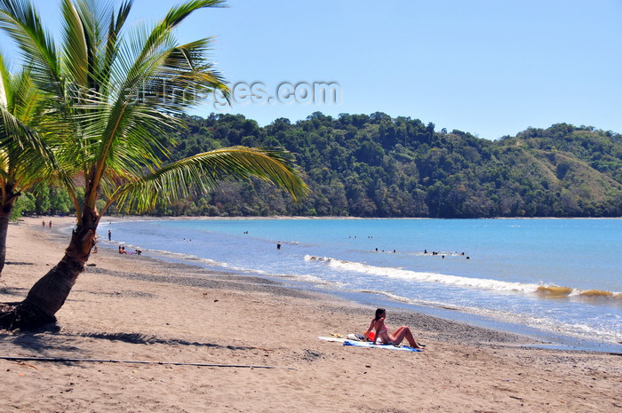 costa-rica91: Playa Herradura, Puntarenas province, Costa Rica: coconut trees and horseshoe beach - photo by M.Torres - (c) Travel-Images.com - Stock Photography agency - Image Bank