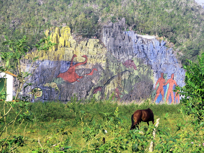 cuba116: Cuba - Viñales valley / Valle de Viñales - Pinar del Rio Province - UNESCO World Heritage Site: pre-historical mural - Guanahatabeyes indians - Valle de Dos Hermanas - Mural de la Prehistoria - mogote llamado Pita - photo by L.Gewalli - (c) Travel-Images.com - Stock Photography agency - Image Bank