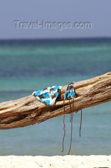 cuba35: Cuba - Guardalavaca - bikini on tree - bathing suit drying on a tree by a blue ocean - photo by G.Friedman - (c) Travel-Images.com - Stock Photography agency - Image Bank