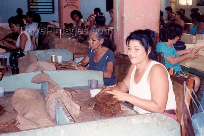 cuba5: Cuba - Santiago de Cuba: Making Cigars (photo by M.Torres) - (c) Travel-Images.com - Stock Photography agency - Image Bank