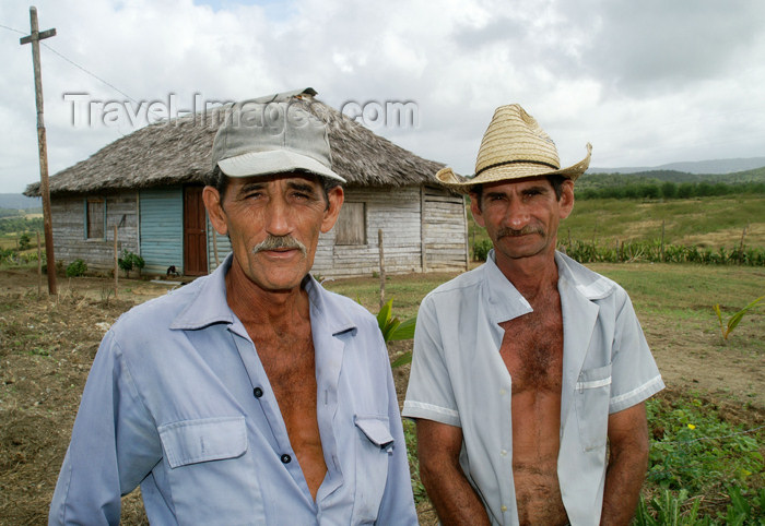 cuba86: Cuba - Holguín province - two farmworkers working their land and tilling their soil - photo by G.Friedman - (c) Travel-Images.com - Stock Photography agency - Image Bank