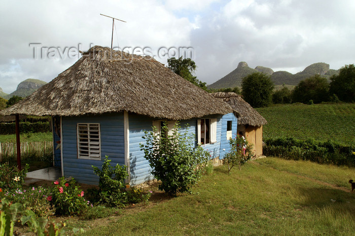 cuba87: Cuba - Holguín province - blue house and green fields - photo by G.Friedman - (c) Travel-Images.com - Stock Photography agency - Image Bank