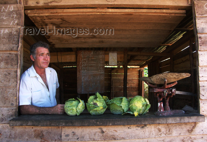cuba91: Cuba - Holguín province - cabbage vendor - photo by G.Friedman - (c) Travel-Images.com - Stock Photography agency - Image Bank