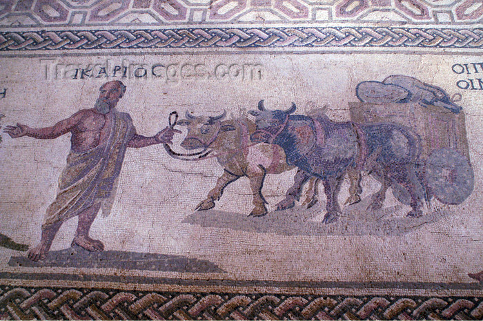 cyprus106: Paphos, Cyprus: Roman mosaic in the house of Dionysos - Icarus - photo by A.Ferrari - (c) Travel-Images.com - Stock Photography agency - Image Bank