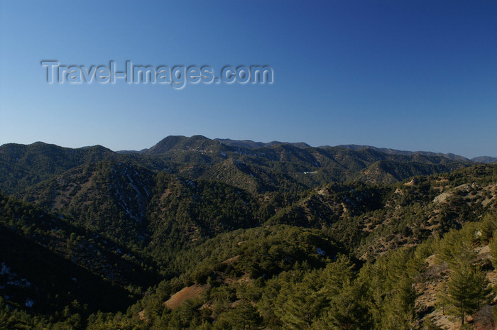 cyprus128: Troodos mountains - Nicosia district, Cyprus: forest area - photo by A.Ferrari - (c) Travel-Images.com - Stock Photography agency - Image Bank