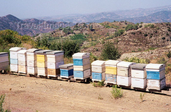 cyprus30: Cyprus - Paphos district - mountain honey - beehives - photo by Miguel Torres - (c) Travel-Images.com - Stock Photography agency - Image Bank