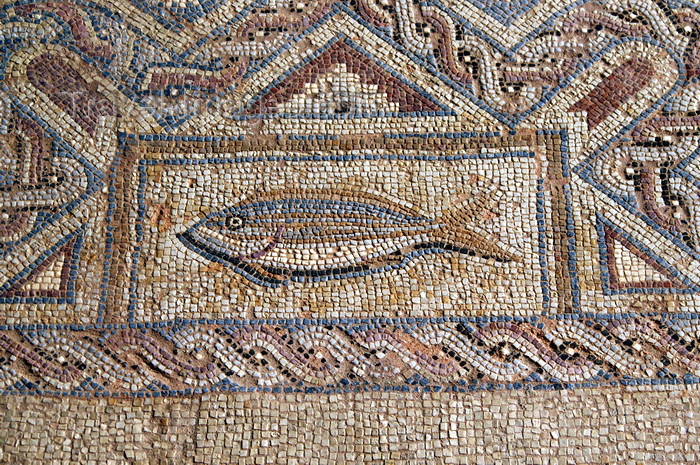 cyprus66: Kourion - Limassol district, Cyprus: fish - mosaic in the baths - complex of Eustolios - photo by A.Ferrari - (c) Travel-Images.com - Stock Photography agency - Image Bank