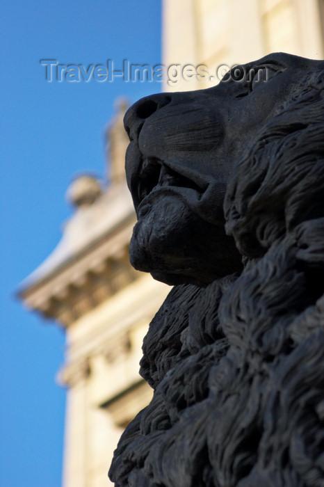 czech423: Lion sculpture outside the Rudolfinum, Dvorak Concert Hall. Prague, Czech Republic. - photo by H.Olarte - (c) Travel-Images.com - Stock Photography agency - Image Bank
