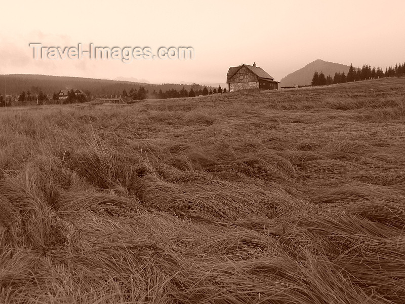 czech486: Czech Republic - Jizera Mountains / Jizerske hory: fields - Liberec Region - photo by J.Kaman - (c) Travel-Images.com - Stock Photography agency - Image Bank