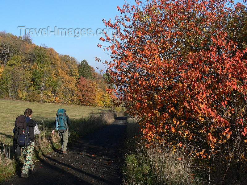 czech501: Czech Republic - Ceske Stredohori mountains: Autumn foliage - Usti nad Labem Region - photo by J.Kaman - (c) Travel-Images.com - Stock Photography agency - Image Bank