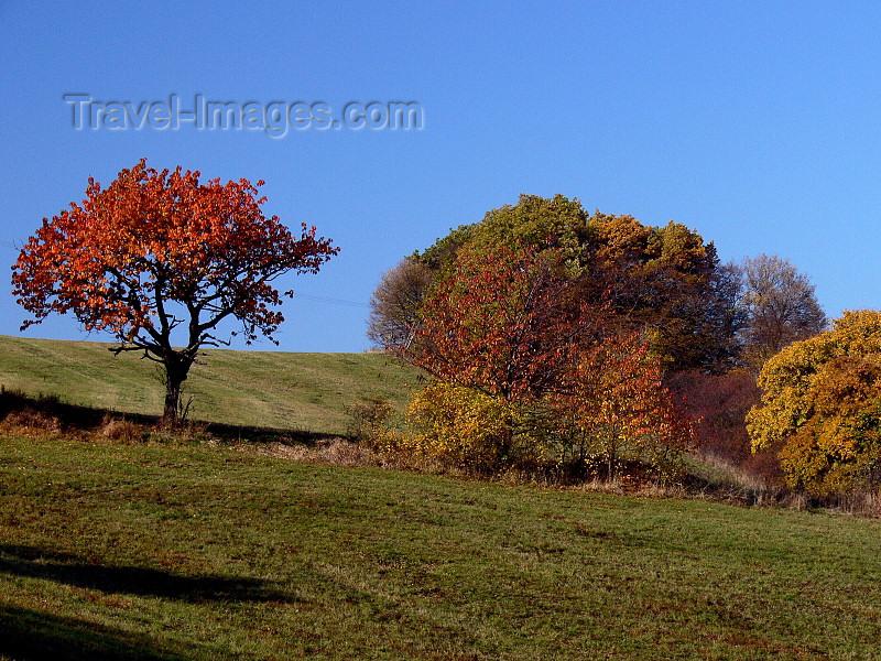 czech502: Czech Republic - Ceske stredohori mountains: Autumn foliage - fields - Usti nad Labem Region - photo by J.Kaman - (c) Travel-Images.com - Stock Photography agency - Image Bank