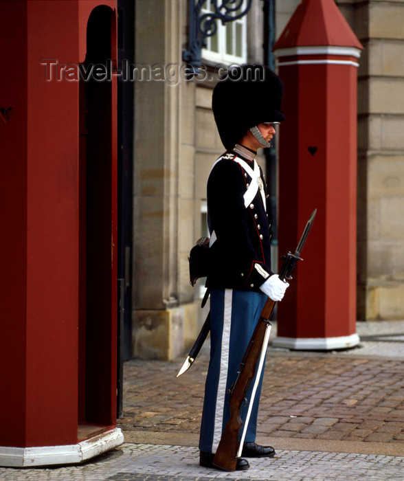 denmark26: Copenhagen, Denmark: Royal Guard on duty - photo by J.Fekete - (c) Travel-Images.com - Stock Photography agency - Image Bank