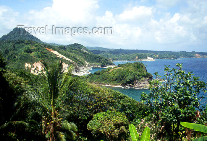 dominica3: Dominica: ocean view - photo by M.Sturges - (c) Travel-Images.com - Stock Photography agency - Image Bank