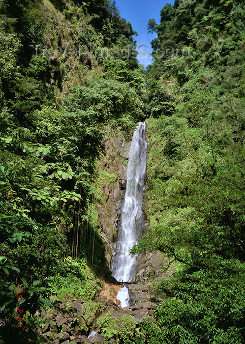 dominica9: Dominica - Inland water falls - Morne Trois Pitons National Park - Unesco world heritage site - photo by G.Frysinger - (c) Travel-Images.com - Stock Photography agency - Image Bank