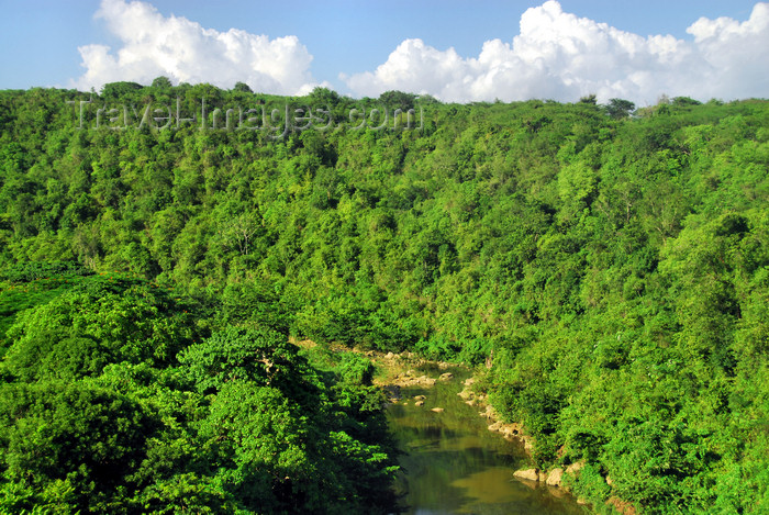 dominican228: La Romana, Dominican Republic: river and forest west of the city - photo by M.Torres - (c) Travel-Images.com - Stock Photography agency - Image Bank