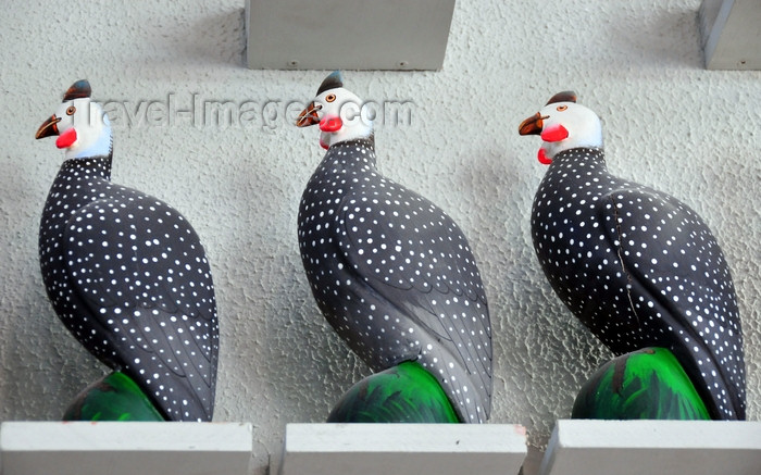 dominican264: El Catey, Samaná province, Dominican republic: guineafowls - Dominican handicrafts - Samaná El Catey International Airport - photo by M.Torres - (c) Travel-Images.com - Stock Photography agency - Image Bank