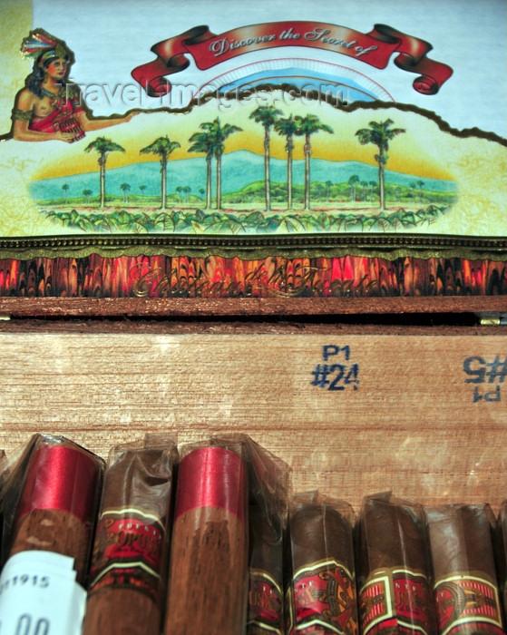 dominican277: El Catey, Samaná province, Dominican republic: Arturo Fuente OpusX Cigars - Chateau de la Fuente - Samaná El Catey International Airport - photo by M.Torres - (c) Travel-Images.com - Stock Photography agency - Image Bank