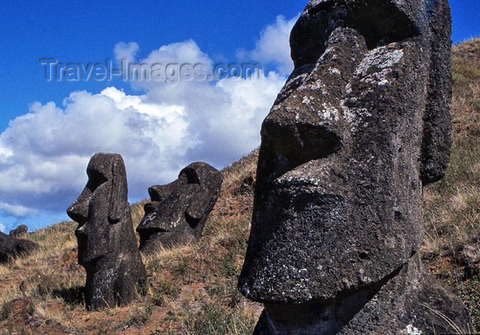 easter21: Easter Island / Rapa Nui: Rano Raraku Moai: statues erected on a hillside - heads - photo by G.Frysinger - (c) Travel-Images.com - Stock Photography agency - Image Bank