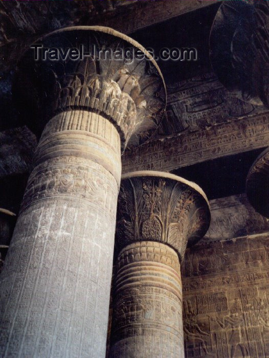 egypt23: Esna, Qena Governorate, Egypt: columns at Khounum / Khnum temple - photo by M.Torres - (c) Travel-Images.com - Stock Photography agency - Image Bank
